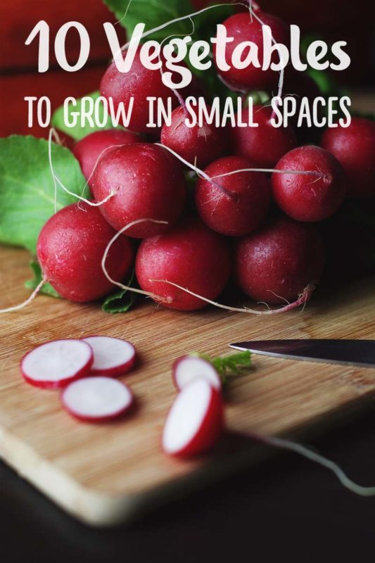 10 Best Vegetables to Grow in Small Spaces